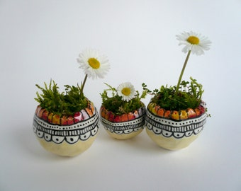 Small containers for plants-small pots for succulents