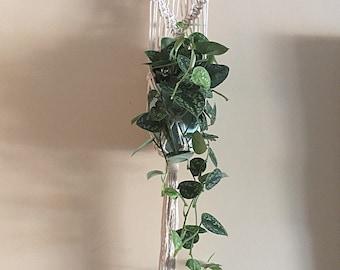 Macrame Wall Hanger-Plant Hanger-100% Cotton