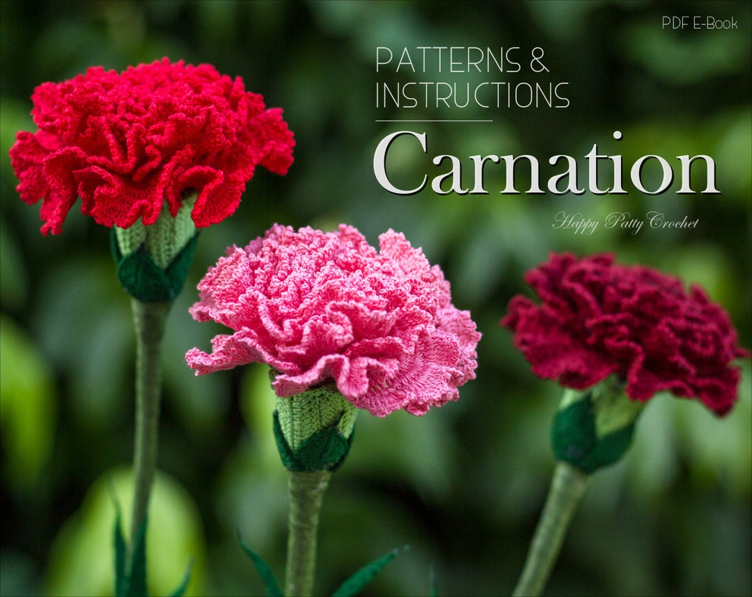 Crochet Carnation Pattern Croche Flower Pattern Carnation