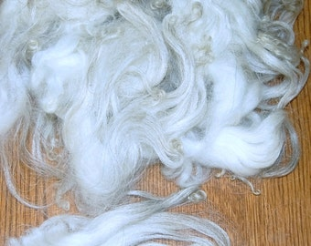 Karakul Sheep Wool Locks for Spinning, Felting, Santa Beards, Doll Hair, Doll Wig, Cream White with Taupe Gray Highlights 1 oz.