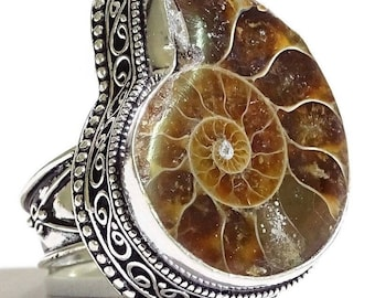 Big Fossil Ammonite Sterling Silver Ring size 8