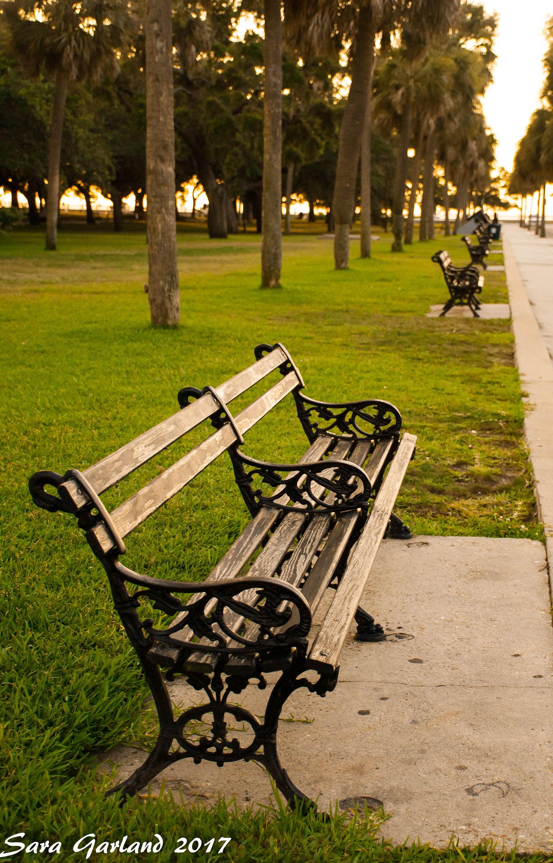 Color Photography Bench Charleston South Carolina
