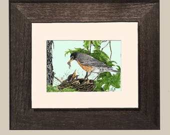 Robin with Babies_Framed- FHGray