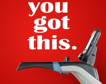 You Got This - vinyl wall decal - fitness wall decal - motivation decor - vinyl decal sticker