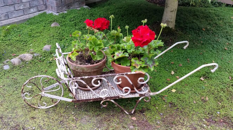 Antique French Garden Wheelbarrow Antique French Metal