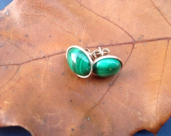 Oval Malachite Studs