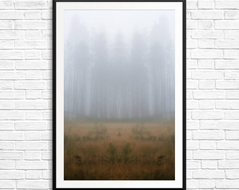 Dreamscape, fog and trees, misty landscape, foggy landscape, landscape photography, surrealism, abstract photography, fine art photos