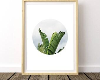 Banana Leaf Decor, Banana Leaves Print, Banana Leaves Art, Banana Wall Art, Banana Leaf Wall Art, Tropical Leaf, Banana Leaf Photo