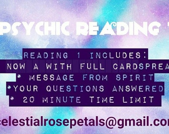 Psychic Reading 1 (20 minutes)