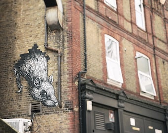 Graffiti Print, Street Art Print, Black and White Photography, London Street Art, Urban Decor, Contemporary Wall Art, ROA Rat, Boys Room