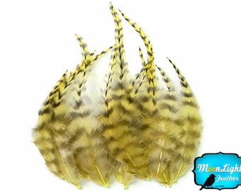 Rooster Feathers, 1 Dozen - SHORT PALE YELLOW Grizzly Rooster Hair Extension Feathers : 558