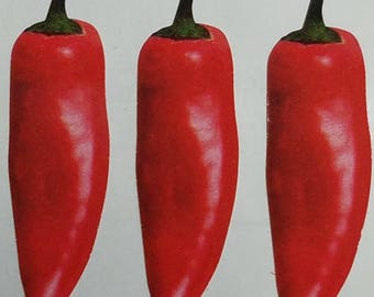 Stickypix Red Chilies Stickers 3 Images Per Sheet Scrapbooking
