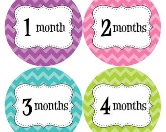Monthly Baby Stickers Baby Month Stickers Baby Girl Month Stickers Monthly Photo Stickers Monthly Milestone Stickers 259