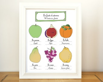 Kitchen Art Fall Fruits Autumn 11x14 art print of original illustration home decor French Kitchen Food Gourmet botanical chart