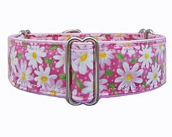 Pink Daisy.  Adjustable martingale dog collar, greyhound collar, whippet collar, doberman collar, great dane collar, boxer collar!