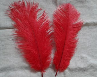 set of 2 red ostrich feathers