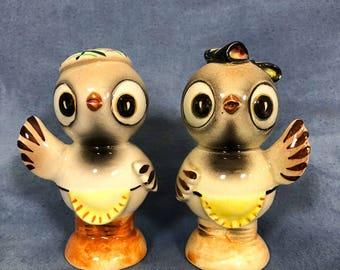 Vintage Kitsch Waving Bird Salt and Pepper Shakers, Cute! Bird Couple