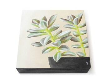 Succulent in a pot - hand painted succulent art - succulent painting - modern botanical art - botanical decor - realistic plant painting