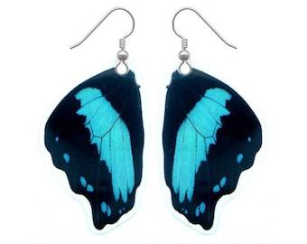 Real Butterfly Wing Earrings - Butterfly Jewelry, Nature Jewelry, Taxidermy, Butterfly Earrings, Butterfly Wings, Colorful