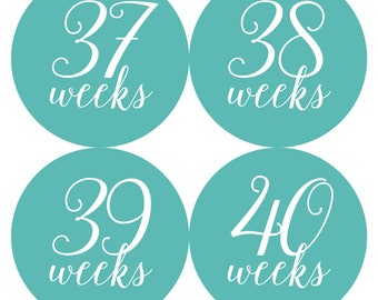 INSTANT DOWNLOAD - Printable Weekly Teal Calligraphy Pregnancy BUMP Stickers - Every weeks and Bonus Set - Photo Prop