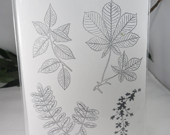 Leaves -- Variety of Leaves Stamps -- Leaf Stamps