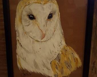 Barn Owl Painting - Framed