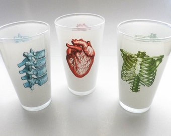 Beer Glass Human Anatomy Gift Pint doctors office novelty medical anatomical heart party favor goth nursing physician skeleton student nerd