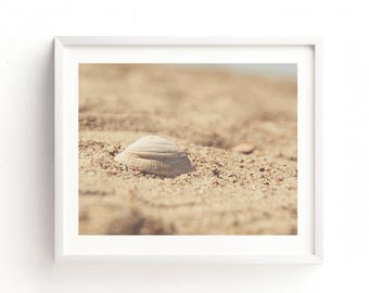 seashell print, seashell photo, beach printable, nursery wall art, instant wall art, girls room decor, brown, earth tones, nautical print