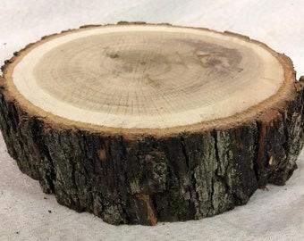 "White Oak 8-10"" diameter wood slice. Centerpiece (stock photo)"