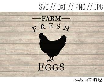 Farm Fresh Eggs Digital Art File with Chicken Hen (svg, dxf, png, jpeg)