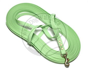 """SPECIAL limited width 5/8"""" (16mm) - Pastel Mint Green - Waterproof Biothane Long Line - Tacking Line - Choice of hardware and length"""