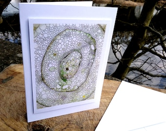 Blank Greetings Card - Green Cellular Structure