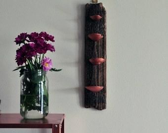 Handmade Driftwood Jewelry Display Hanger / Copper Sea Shells / Beach Home Decor / Contemporary Art / Rose Gold