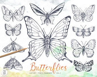 Butterflies, pencil hand drawn, vintage inspired, butterfly drawings, nature, field life, clipart, insects, diy stationery, instant download
