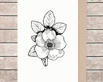 A5 floral card, A5 card, A5 greeting card, illustrated card, blank card, card and envelope, rose card, rose flower