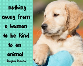 Digital Art Print| Downloadable Quote It takes nothing away from a human being to be kind to an animal. Joaquin Phoenix Quote