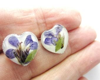 Purple Lobelia Hearts,  Pressed Flower Earrings ,Real Flowers, Post Earrings,  Resin (1609)