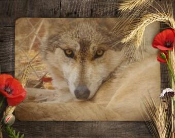 Stylized Wolf Blank Notecard