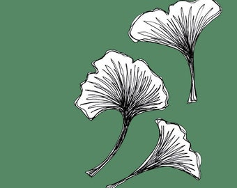 Quick Draw - Hunter Green Ginkgo Leaves - Falling 5x5 Print