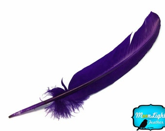 Turkey Quill Feathers, 6 Pieces - PURPLE Turkey Rounds Secondary Wing Quill Feathers : 2252