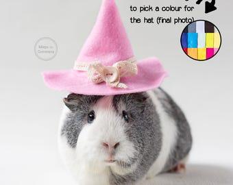 Guinea pig hat