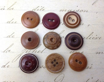 9 Small Vegetable Ivory  Buttons 19 mm