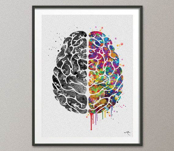 Creative Brain Watercolor Print Medical Art Science Geek