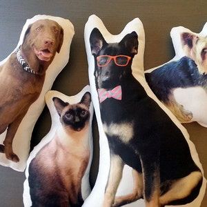 Custom Pet Photo Pillow, Personalized Pet Pillow, College Student Gift, Dorm Room, Graduation Gift, Going to College, Mother's Day Gift