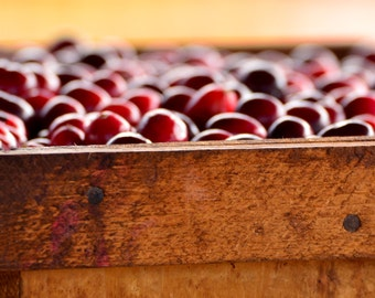 Cranberries Crated
