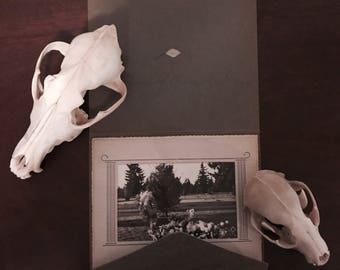 VTG funeral/ grave photograph.