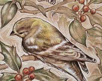Goldfinch & Holly