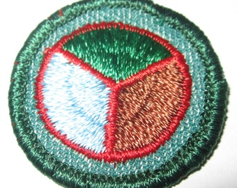 """Vintage """"Conservation"""" Intermediate Girl Scout Badge circa 1950's"""