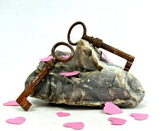 Vintage skeleton keys - Old skeleton keys - Rustic keys - Antique skeleton keys - Key collection - Wedding keys - Steampunk keys. (AN23)