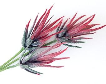 Faux aloe, plant, red succulent, spiky red succulent, artificial succulent, fake succulent, red succulent stem, succulent plant